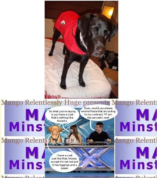 judge_moose