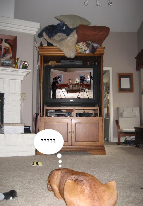 dennis_watching_tv
