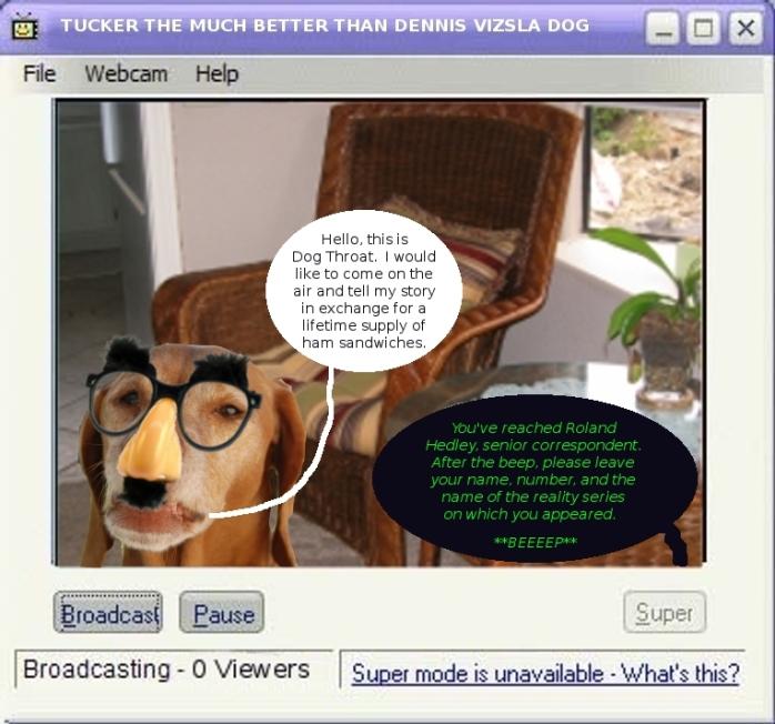 webcam_tucker_dog_throat