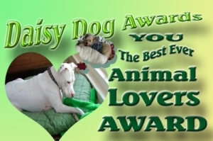 daisy-dog-awards-1