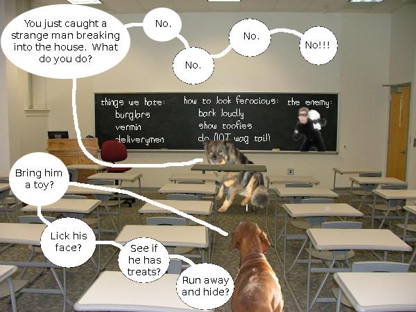 dennis_trixie_classroom