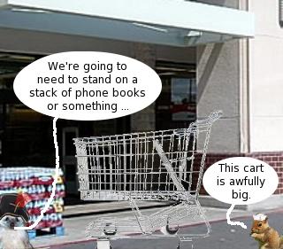 ralphs_cart