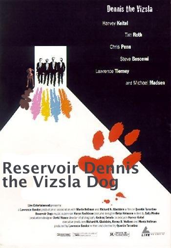 reservoir_dennis