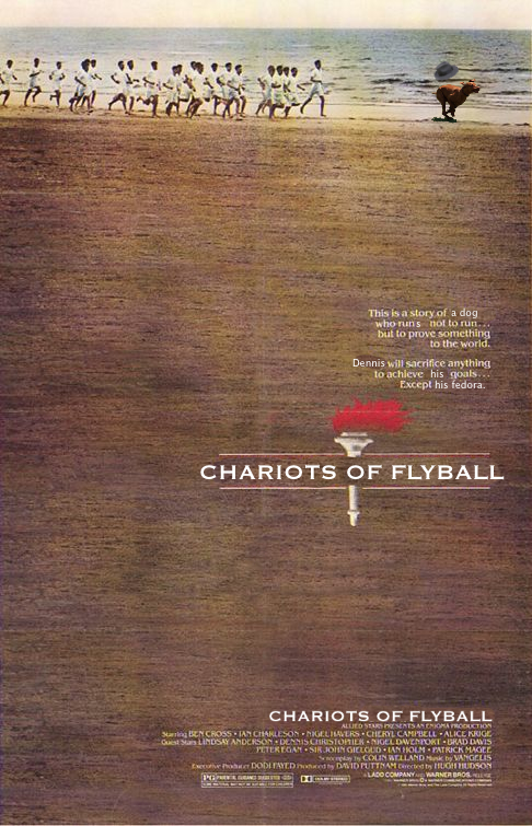 chariots_of_flyball