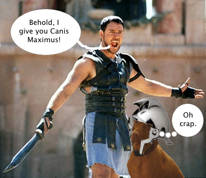 dennis_the_gladiator