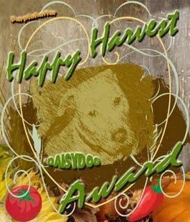 happy-harvest-daisy-dog