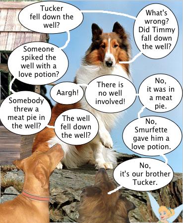 lassie_doesnt_get_it