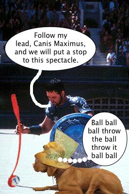 maximus_has_a_plan
