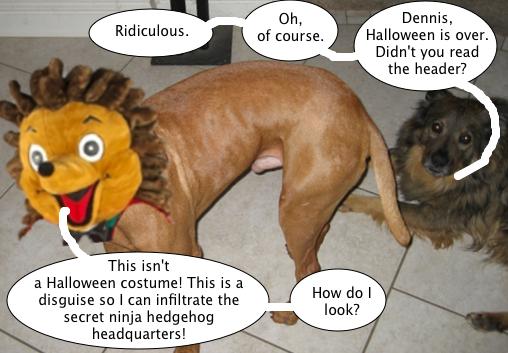 dennis_hedgehog_disguise