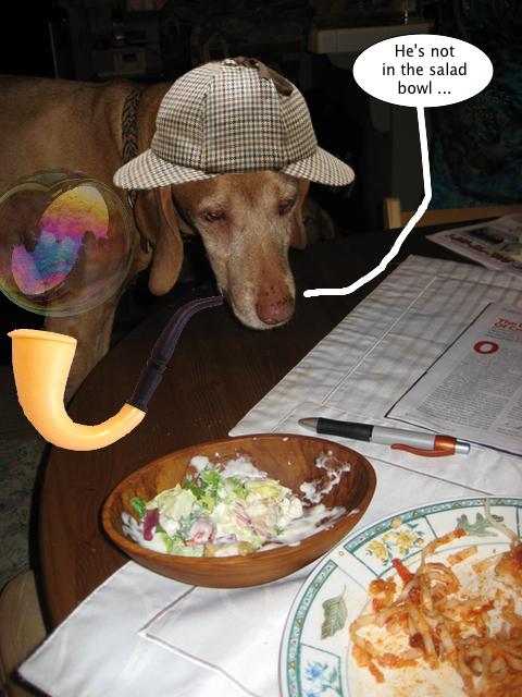 dennis_not_in_salad_bowl
