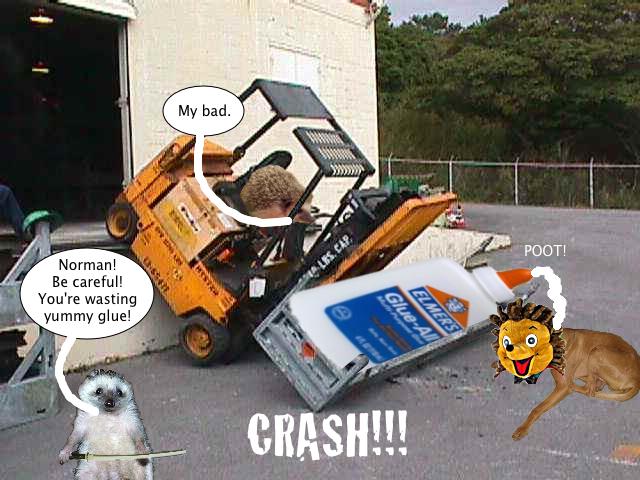 hedgehog_forklift_accident