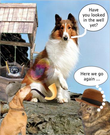 lassie_thinks_well