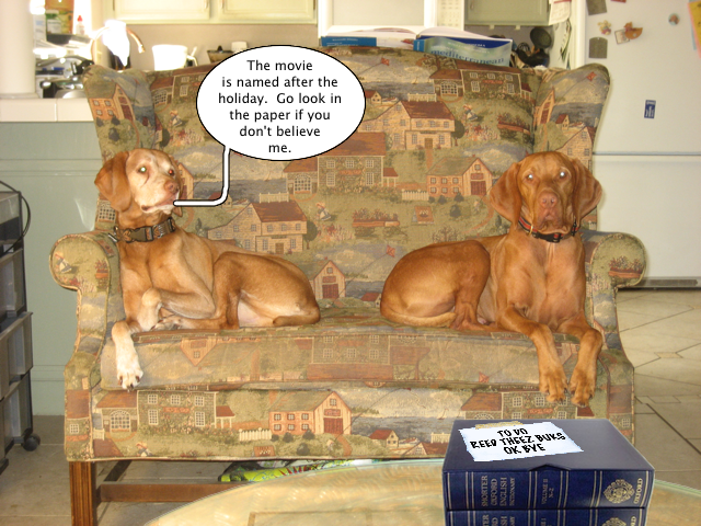 Vizsla Quotes ok now pooh bear is the first