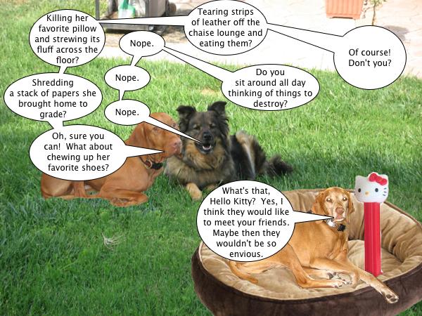 tucker_talks_to_hello_kitty_3
