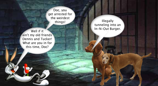 busted_for_burgers_1
