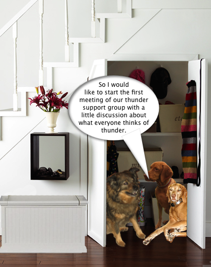Thunder_Support_Group_1