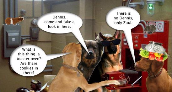 Dennis_Storage_Facility_1