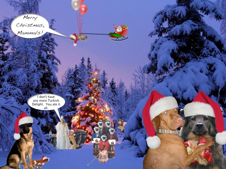 MerryChristmasMammals