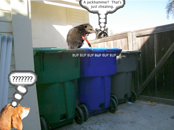 possum_trash_3