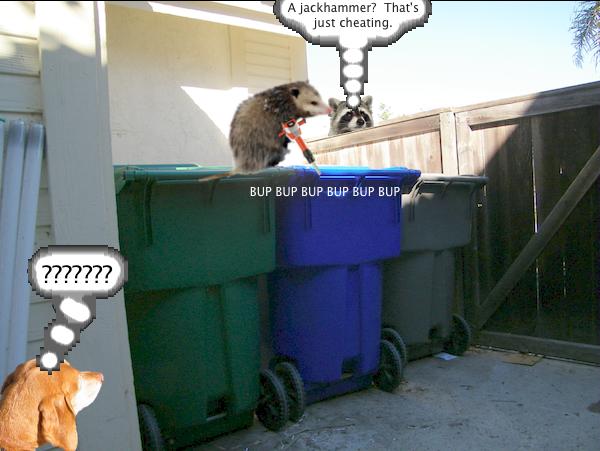 possum_trash_3