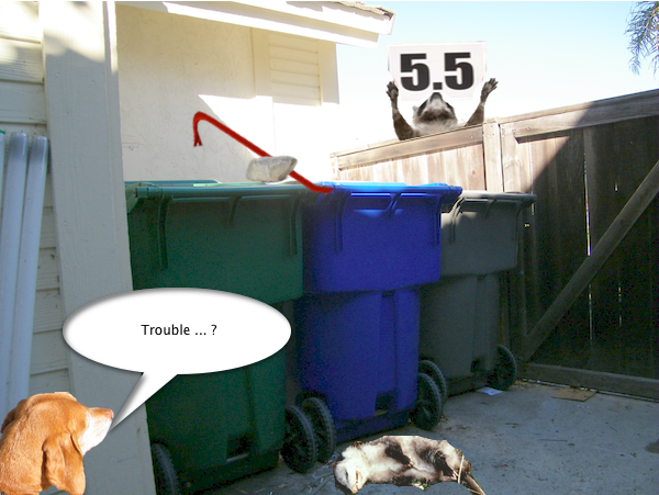 possum_trash_6