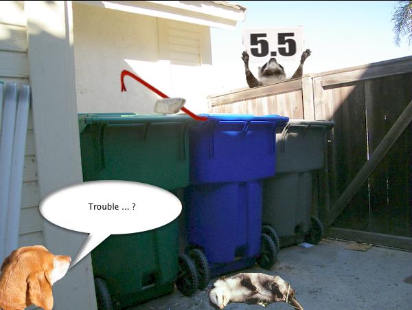 possum_trash_6