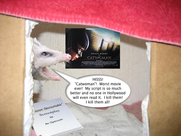opossum_hates_catwoman