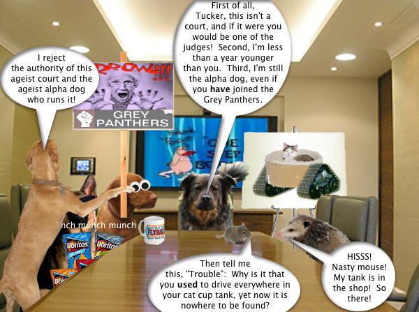 possum_boardroom_4