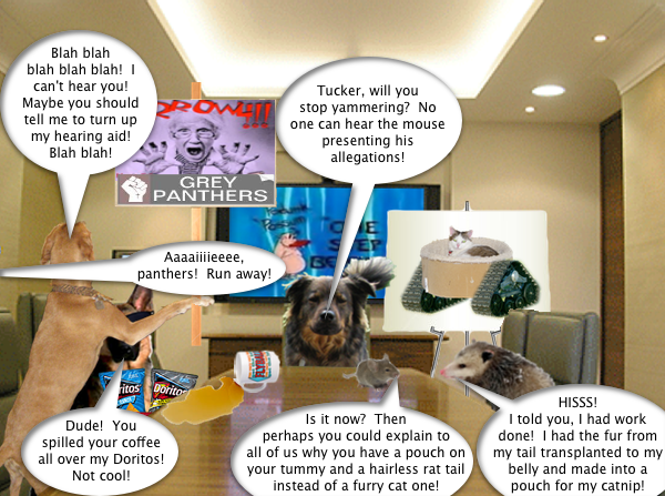 possum_boardroom_5