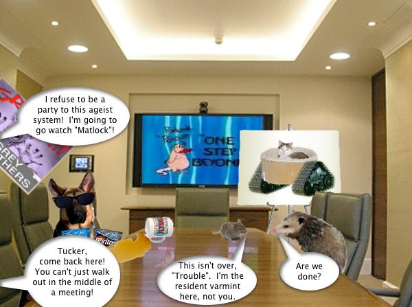 possum_boardroom_6