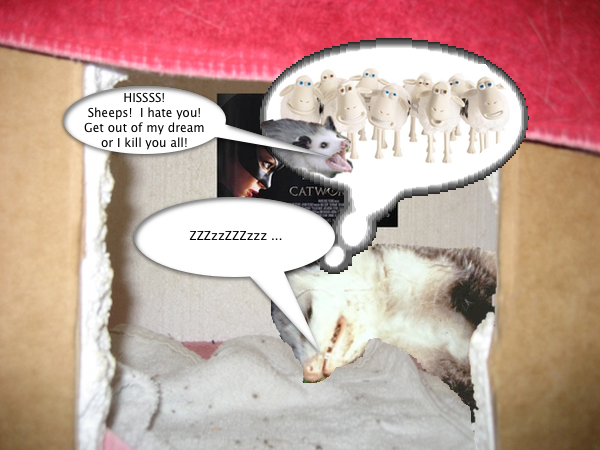 possum_sheep_1