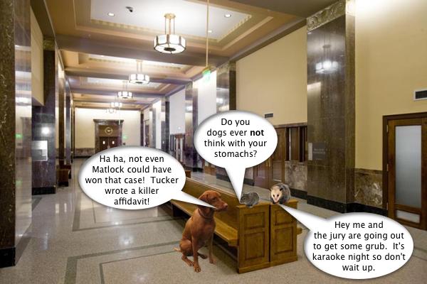 mouse_vs_possum_4