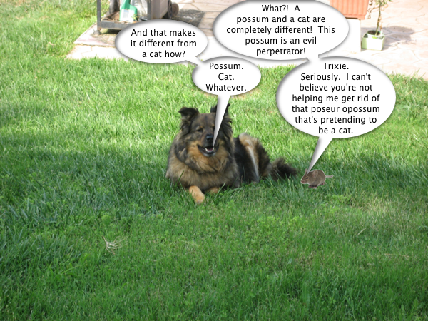 trixie_mouse_discuss_1