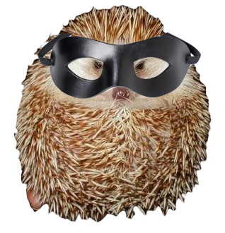 ninja_hedgehog_commander