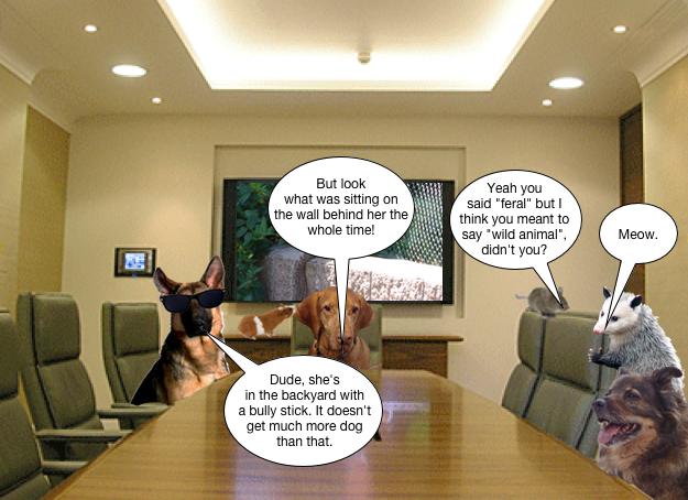 dennis_meeting_about_saya_3