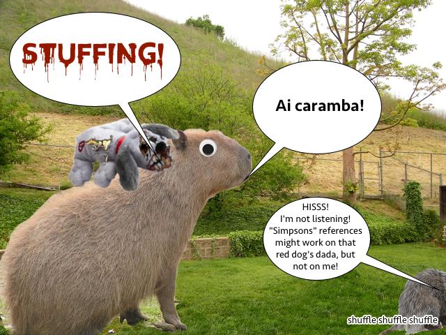 possum_capybara_yard_2