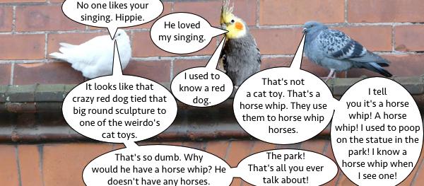 pigeon_talk_3