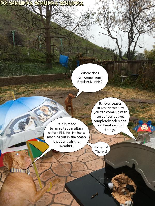 Dennis_Saya_Rain_2