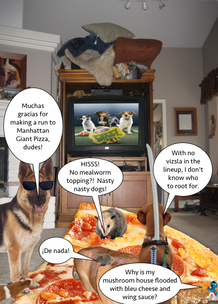 puppy_bowl_pizza
