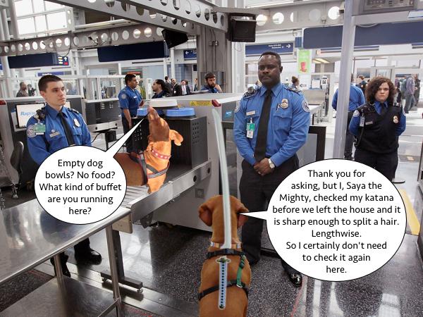 DennisSayaAirport