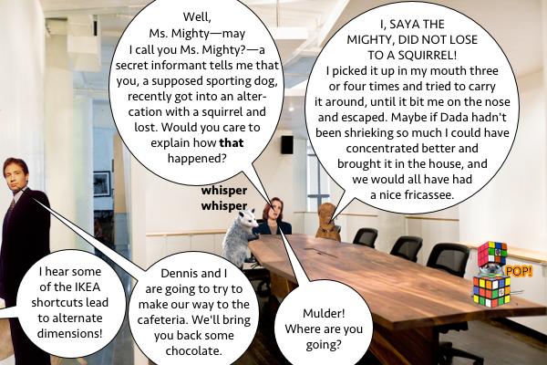 Dennis_Saya_Interrogation_4