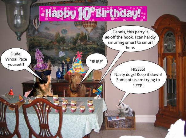 dennis_10th_birthday_5