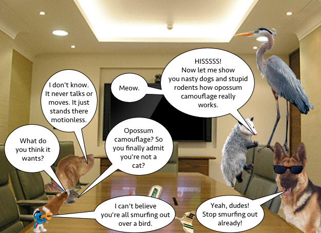 heron_meeting_1
