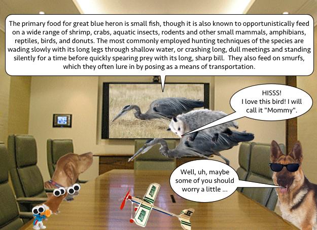 heron_meeting_4