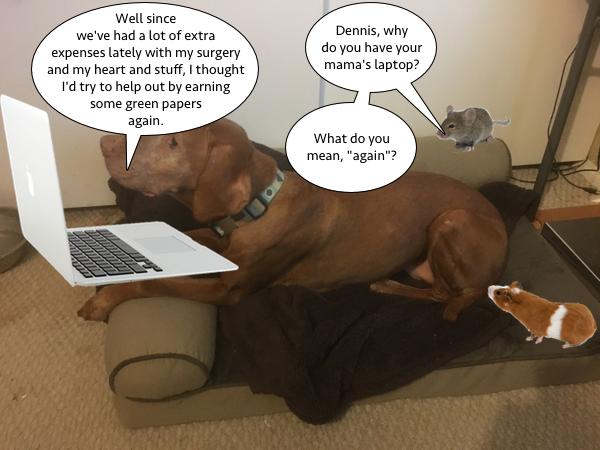 dennis_wants_to_work_1