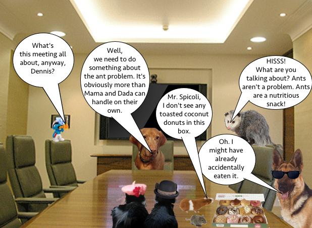 anti_ant_meeting_2