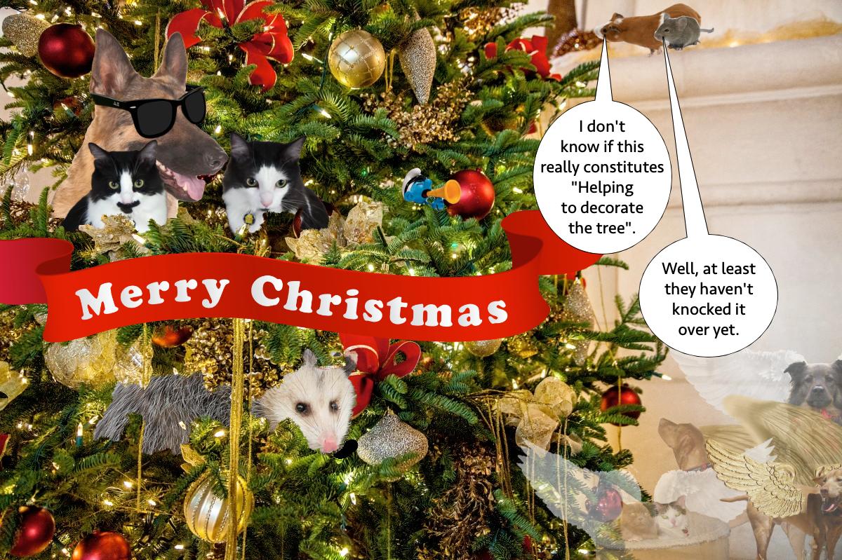 Christmas_Card_2018
