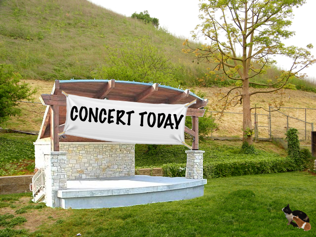 concert_today_2