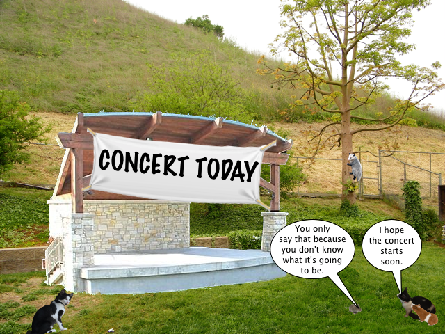 concert_today_4