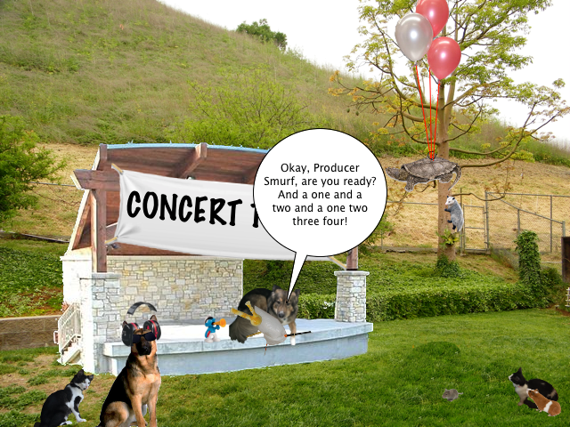 concert_today_7